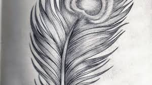 peacock feather pencil drawing drawing pencil peacock feathers