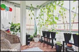 luxury indoor home garden backyard escapes champsbahrain com