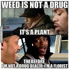 Weed Meme - weed is not a drug meme