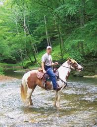Gunpowder Falls State Park Map by Trail Riding At Gunpowder Falls State Park Maryland Horse U0026rider