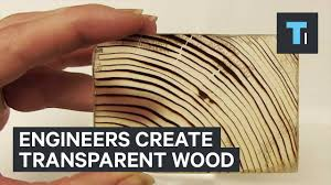 engineers create transparent wood youtube