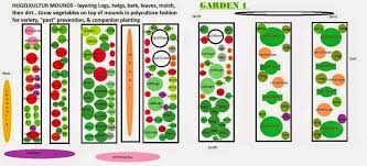 Companion Garden Layout Vegans Living The Land Layout Of 2015 Summer Fall