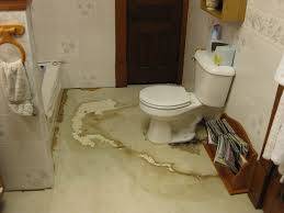 Bathroom Linoleum Ideas Bathroom View How To Replace Subfloor In Bathroom Interior