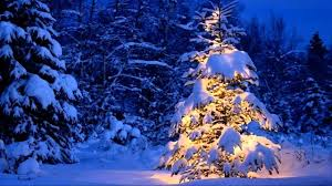 blue christmas dion blue christmas
