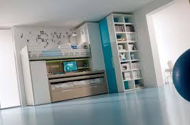 Blue Bedroom Ideas For Teenage Girls Captivating Boy Rooms Ideas The Minimalist Home Boys Modern Blue