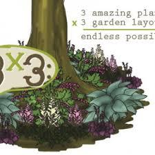 layout garden bulb blog flower bulbs u0026 garden tips
