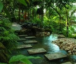 best 25 tropical garden design ideas on pinterest tropical