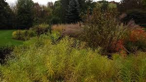 Illinois landscaping