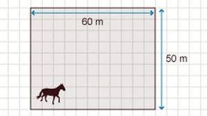 rechteck fläche berechnen grips mathe 16 der flächeninhalt grips mathe grips br de