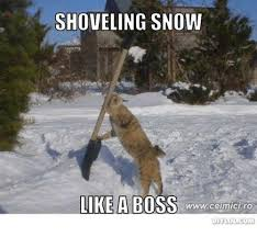 Shoveling Snow Meme - shoveling snow like a boss www celmicrro meme on me me