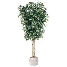 artificial ficus trees ficus tree outdoor ficus trees
