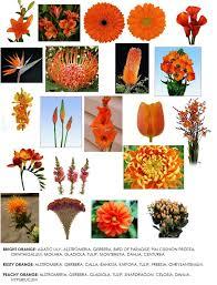 Fall Flowers For Wedding Color Series Orange Flowers For Weddings Dahlia Floral Design