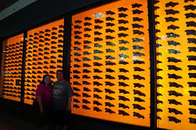 cool wall cool wall of dire wolf skulls picture of la tar pits and