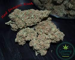 red dragon marijuana strain reviews allbud