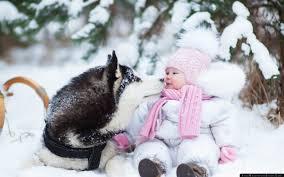husky dog child snow winter photo shoot wallpaper free
