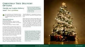 christmas tree delivery christmas tree residential marketing brochure
