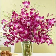 most beautiful flower arrangements beautiful flowers 50 most beautiful flowers in the world