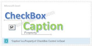 vba caption property of checkbox explained with examples