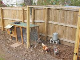 Backyard Chicken Coop Ideas Backyard Chicken Coop Ideas Inspirational Chicken Coops For
