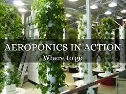 Vertical Aeroponic Garden Aeroponics And Hydroponics By Debra Mcdermott