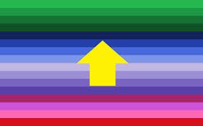 Pride Flag Colors Beyond Mogai Pride Flags U2014 Playersexual Pride Flag