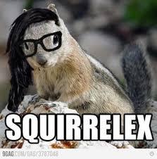 Squirrel Meme - skrillex squirrel meme cyber stalking skrillex pinterest