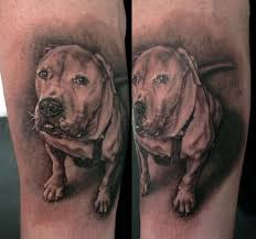 dog portrait tattoo by stefano alcantara tattoos