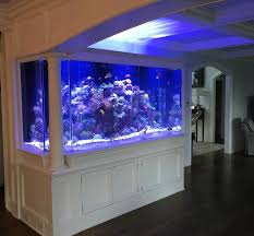 led aquarium lights for reef tanks connecticut aquarium lighting supplies upgrade fish tank lighting