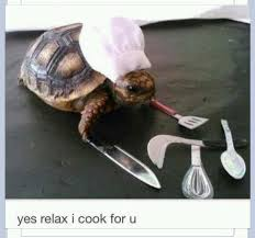 Tortoise Meme - chef tortoise meme by tortoise4eves memedroid