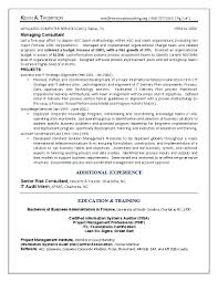 Auditor Sample Resume by It Resume Engineering Sample Resume Business Architect Sample Resume