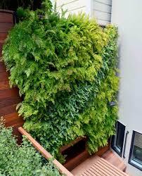 Vertical Wall Garden Plants by Florafelt Vertical Garden Systems