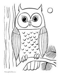 draw owl owl owl craft doodles
