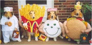 pet costumes i mockery s grab bag pet costumes