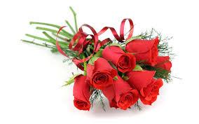 Rose Flower Images Flower Bouquet Images Qygjxz