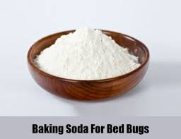 What Kills Bed Bugs Naturally 12 Herbal Remedies For Bed Bugs How To Cure Bed Bugs Naturally