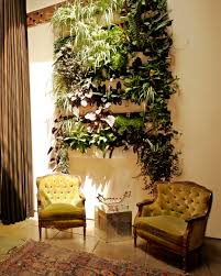 the dry garden a skeptic u0027s view of vertical gardens l a at