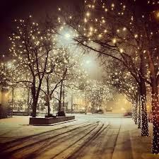 fort collins christmas lights fort collins colorado at christmas time denver colorado