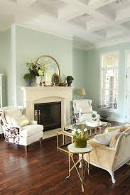 Livingroom Paint Colors by Best 25 Mint Living Rooms Ideas On Pinterest Mint Walls Mint