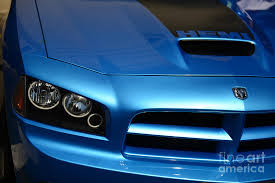 dodge charger srt8 superbee dodge charger srt8 bee photograph by paul ward