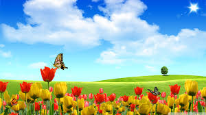 free hd spring wallpapers jnsrmgksb i journal 1920x1080 554 9 kb