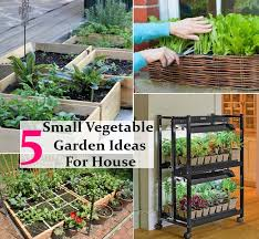 small kitchen garden ideas 5 easy and small vegetable garden ideas for your