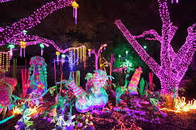 zoo lights houston prices popular houston zoo lights all about house design awesome houston