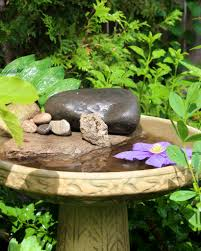 attracting butterflies to your garden with a butterfly bath