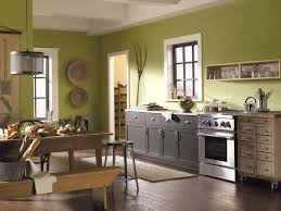 Paint Kitchen Cabinets Paint For Kitchen Cabinets Colors Home Design Ideas