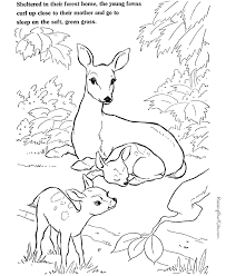 farm animal coloring deer pictures color animale