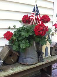 pots in gardens ideas red geranium in an old coffee pot in my garden pinterest