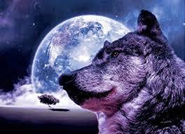 f 27 wolf moon vertical 3 flip 3d 3dddpictures com
