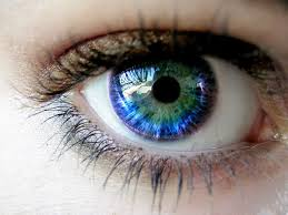 excellent idea food coloring in eye 25 best color ideas on