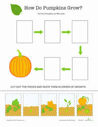 pictures on plant life cycle printables bridal catalog