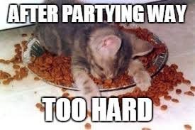 Drunk Cat Meme - image tagged in memes drunk drunk cat party party hard funny memes